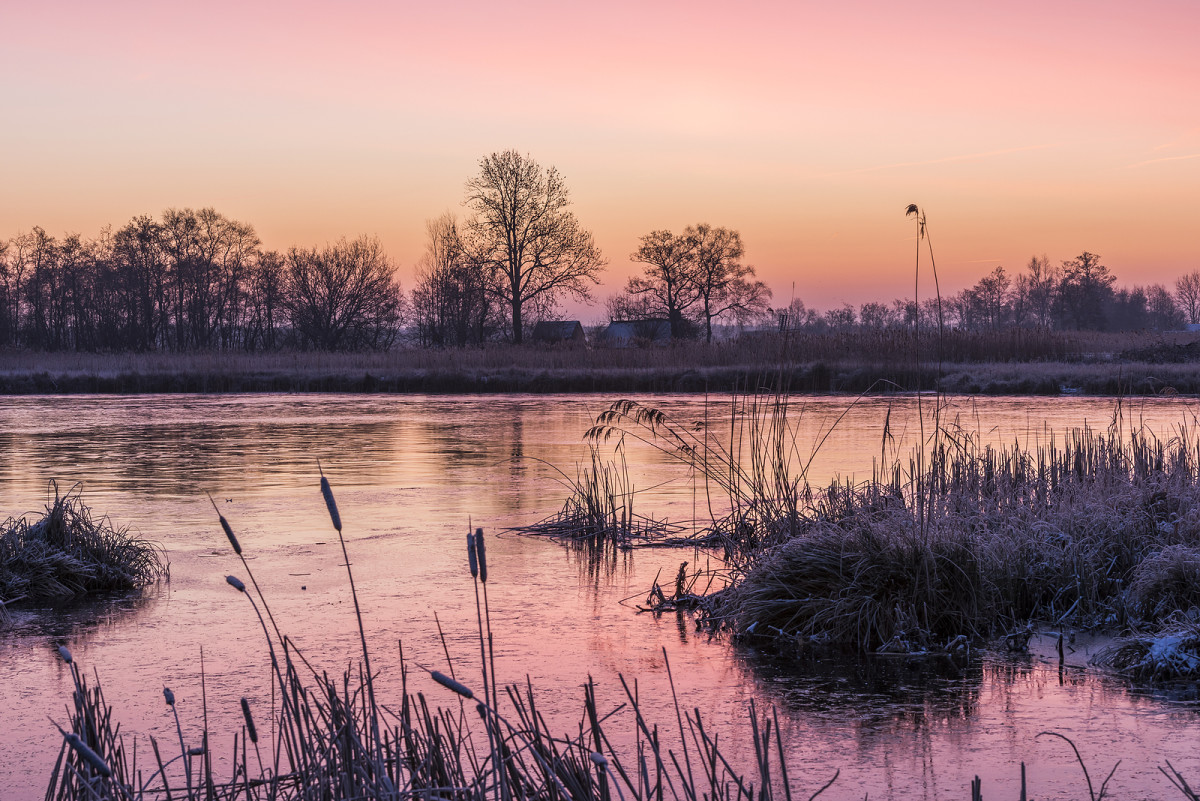 Winter sunset in National Park De Weerribben-Wieden